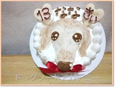 帝塚山ハウンドカムの犬用ケーキ(無添加・似顔絵)の口コミ!注文してみた